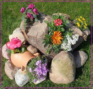 oryginalne mini ogrody, mini skalniaki, pomysł na mini ogródek